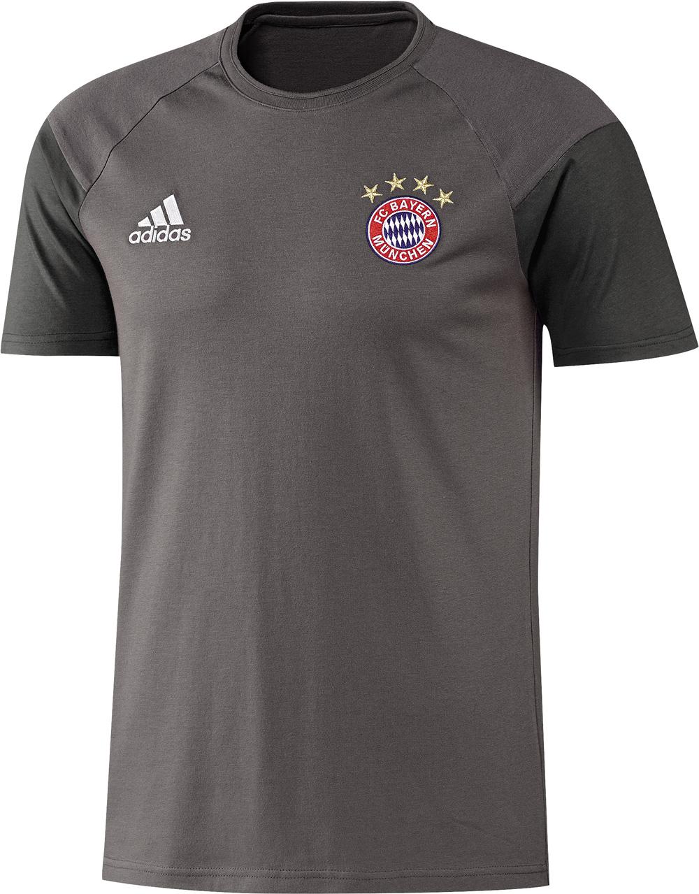 Herren T-Shirt FC Bayern, GRANIT/DGSOGR, L