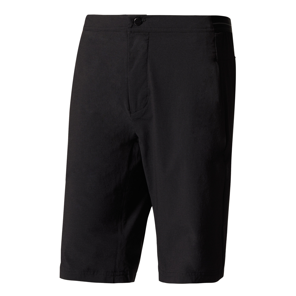 Herren Sporthose TERREX LiteFlex Shorts